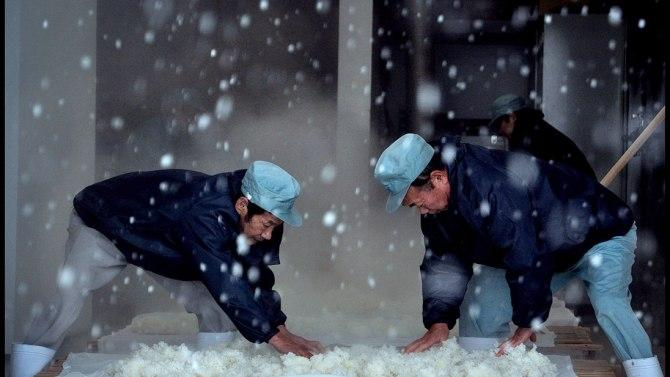 Image of The Birth of Sake