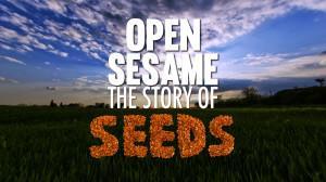 Image of Open Sesame