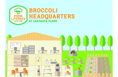 Thanks to The Honey Agency for this awesome design of our Broccoli HQ!
