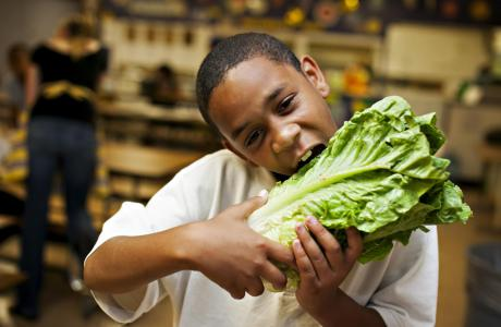 Kid eating lettuce