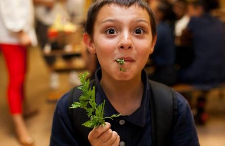 Matthew Castaneda tastes carrot tops for the first time. Photo Marita Madeloni