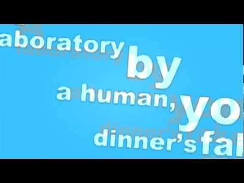 Great Food Movement Rock Song