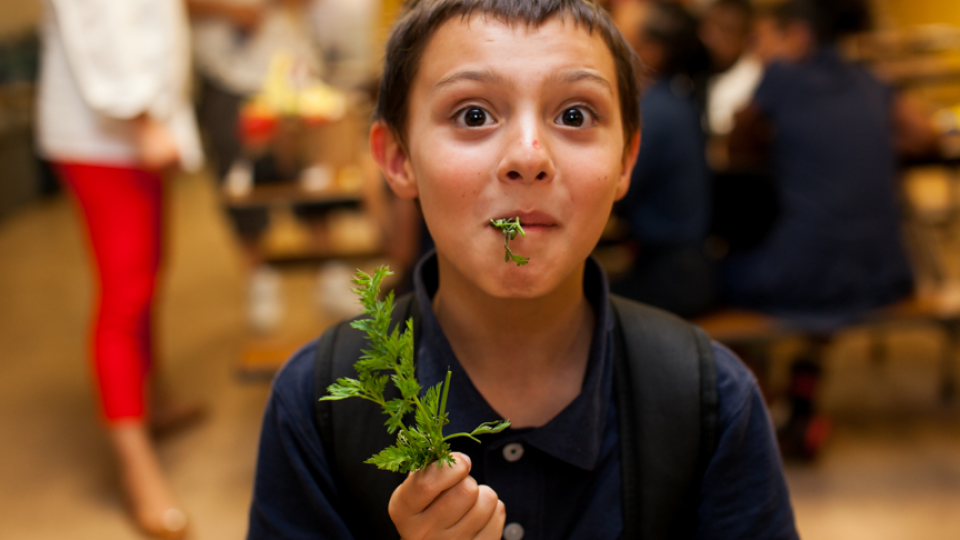 Food Literacy Center – inspiring kids to eat their veggies!